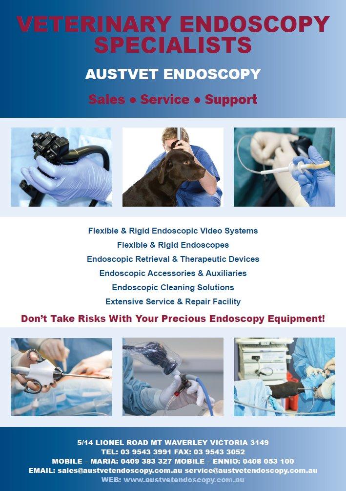 Veterinary Endoscopy Specialists