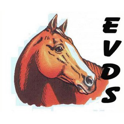 Level 4A  Advanced Equine Dentistry @ EVDS