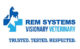 REM Systems Logo