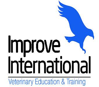 Improve International logo